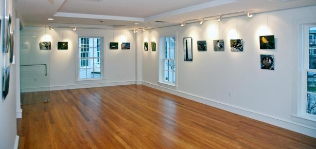 Gallery FOMSI600